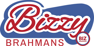 BIZZY LOGO NEW (2021) V15 (FINAL Red on