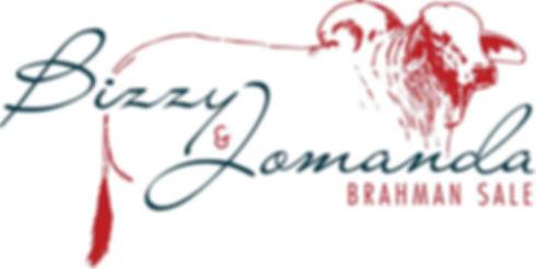 Bizzy Sale logo.jpg