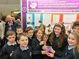 RDS Primary Science Fair 2018