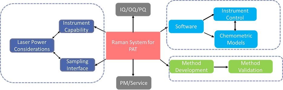 Raman System for PAT.png