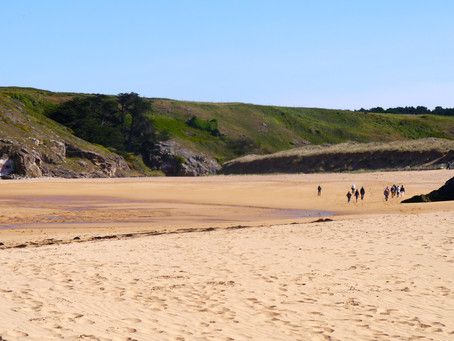 Suchen Sie einen Strand...?