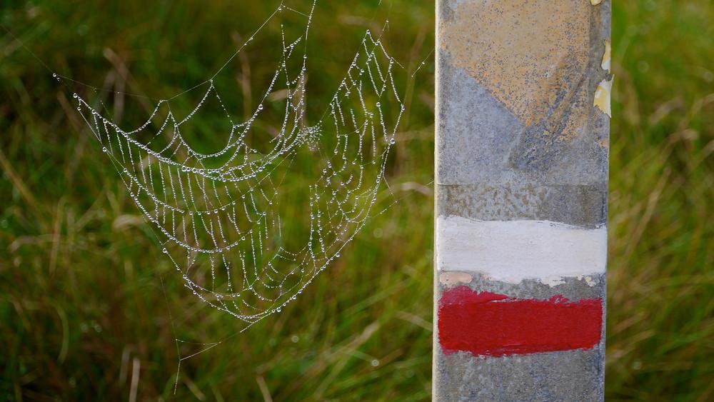 Rot-Weiß Markierung Zöllnerpfad sentier douanier Bretagne