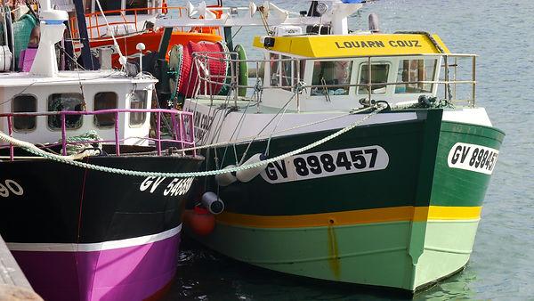 Fischerboote Le Guilvinec.JPG