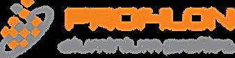 Profilon-Logo-vector.png