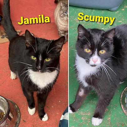 Jamila & Scumpy.jpg