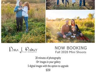 Fall  Mini Shoots!