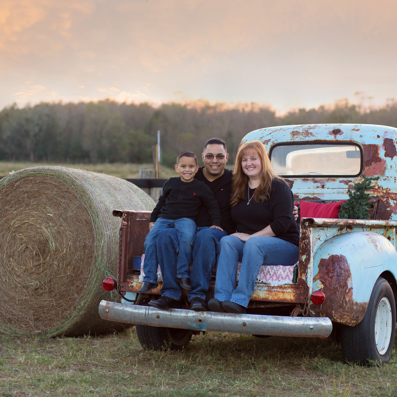 Tampa Family Photographer BEcky Truck sesion_Dec102016_0010