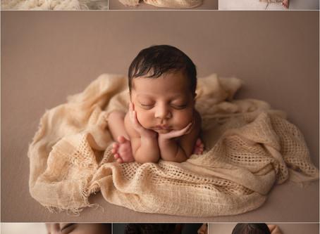 Neutral tones| Newborn baby boy photos in Tampa Florida