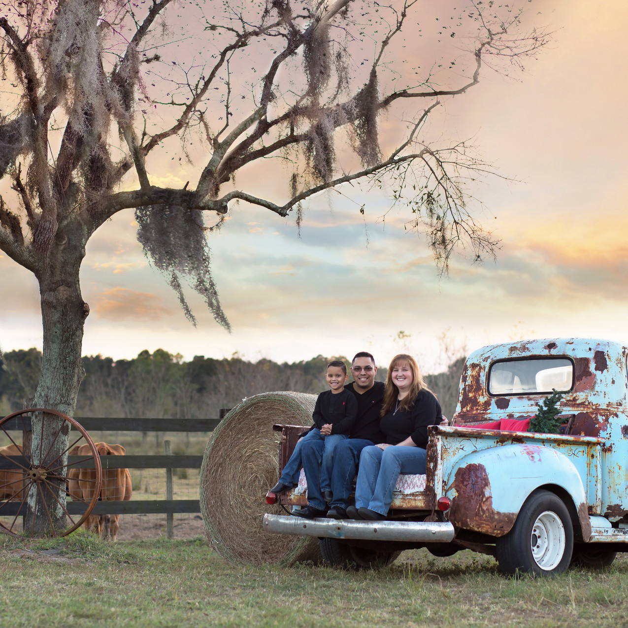 Tampa Family Photographer BEcky Truck sesion_Dec102016_0014 copy