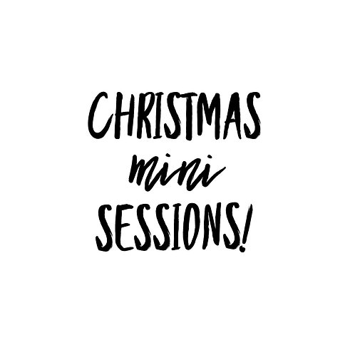 Indoor Christmas mini sessions