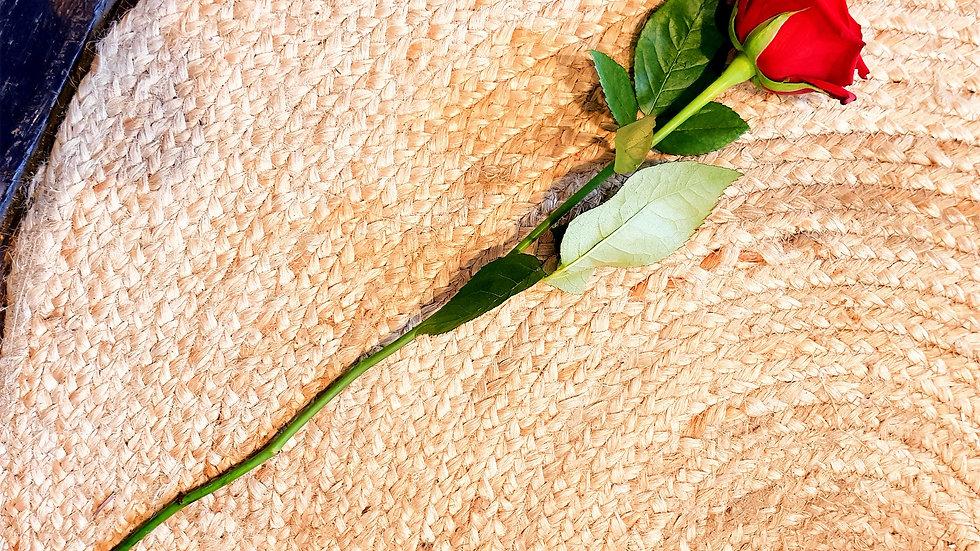 Single Long Stemmed Red Rose