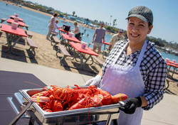 Lobster pan_Dunes background 2018