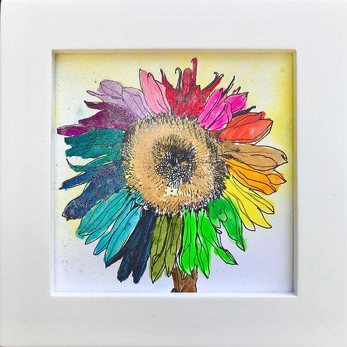 Sunflower -B2