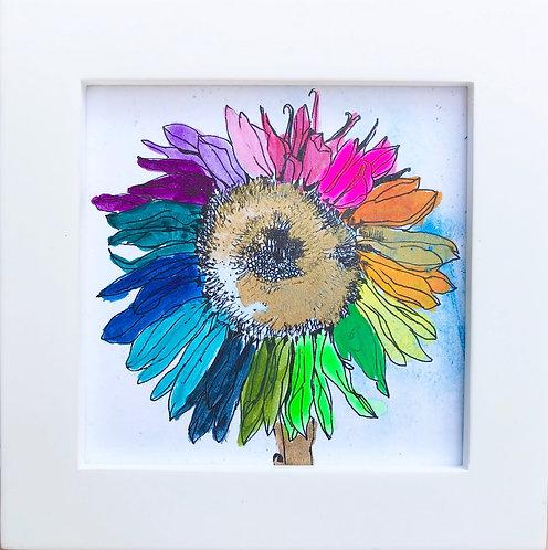 Sunflower -B7