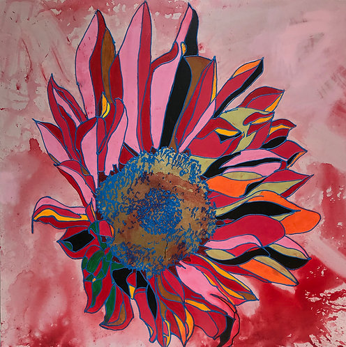 Multi Pink Sunflower on exploding pink background