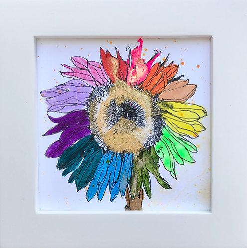 Sunflower -C6