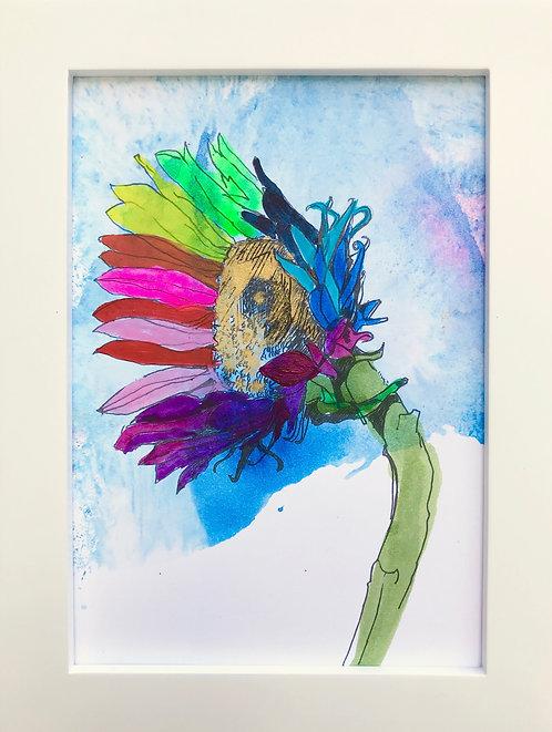 Sunflower - Y3