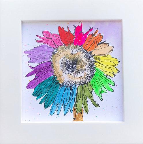 Sunflower -C4
