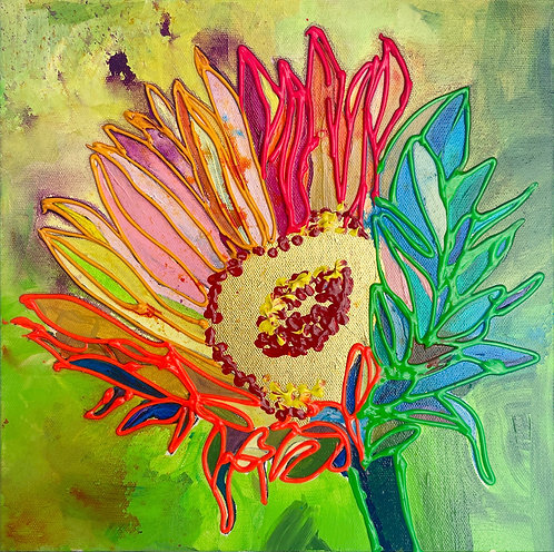 Rainbow SUnFlower, RED center, GREEN background