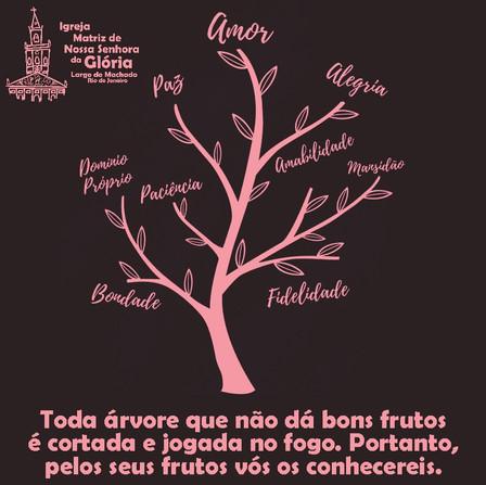 Toda árvore que não dá bons frutos é cortada e jogada no fogo.