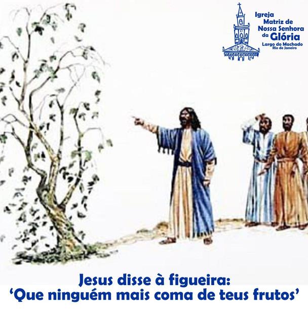Jesus disse à figueira: 'Que ninguém mais coma de teus frutos.' (Mc 11,14)