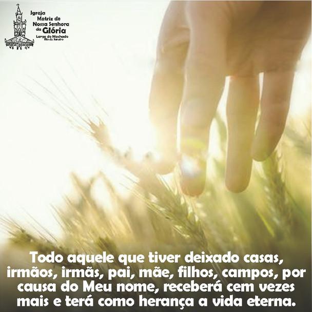 Todo aquele que tiver deixado casas, irmãos, irmãs, pai, mãe, filhos, campos, por causa do Meu nome,