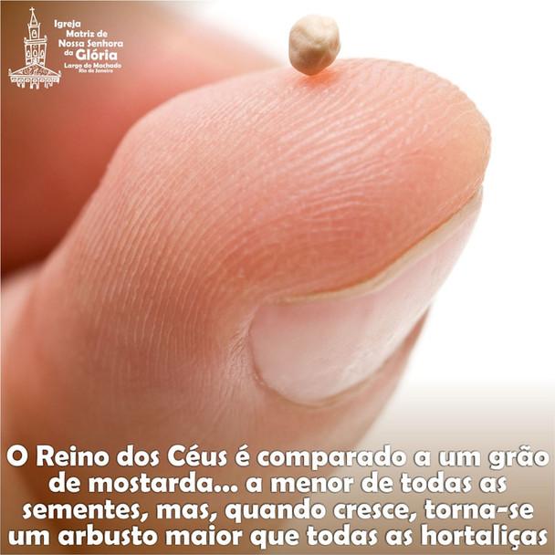 O Reino dos Céus é comparado a um grão de mostarda... a menor de todas as sementes, mas, quando cres