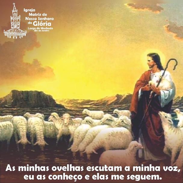 As minhas ovelhas escutam a minha voz, eu as conheço e elas me seguem. Jo 10,27
