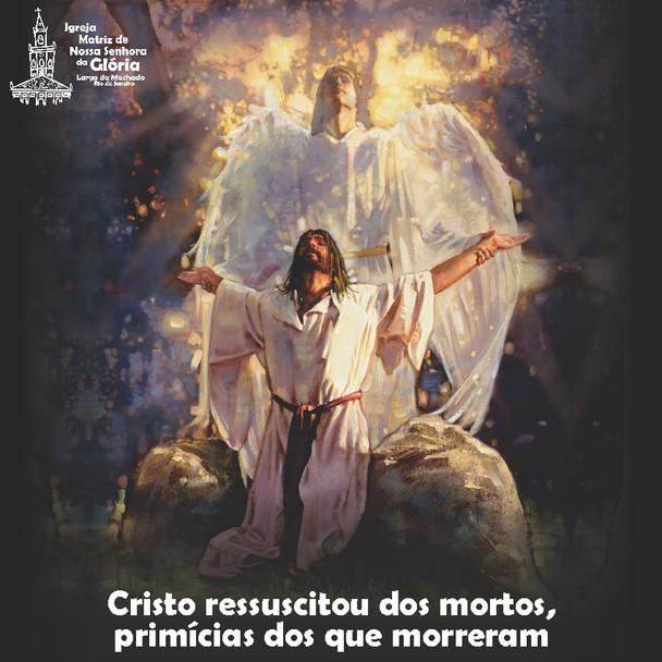 Cristo ressuscitou dos mortos, primícias dos que morreram. (1Cor 15,20)