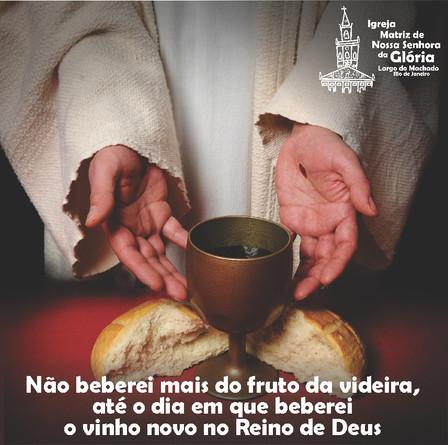 Não beberei mais do fruto da videira, até o dia em que beberei o vinho novo no Reino de Deus' Mc 14