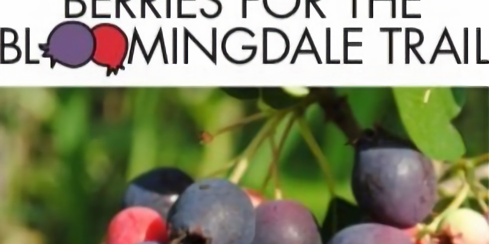 Berries for the Bloomingdale Trail