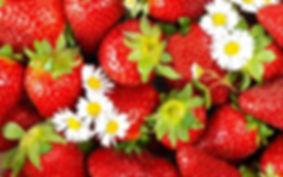 jordbær.jpg