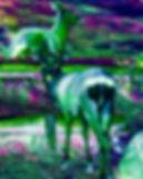 Portrait-1-11 copy 2.jpg
