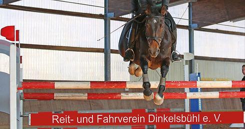 dickes1 (1)_bearbeitet_bearbeitet.jpg