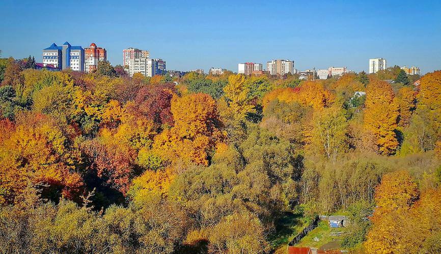 Вид с Покровской горы, Брянск