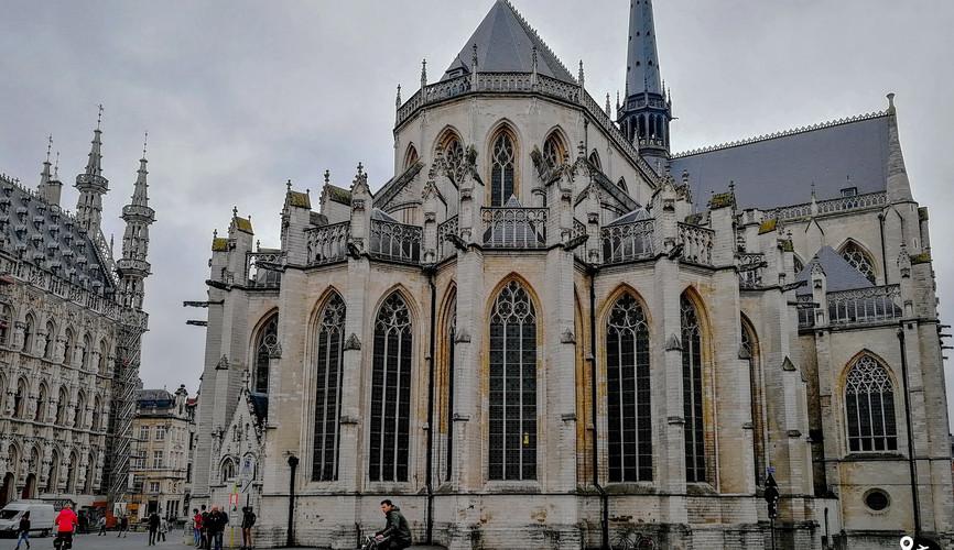 Собор Святого Питера, Лёвен