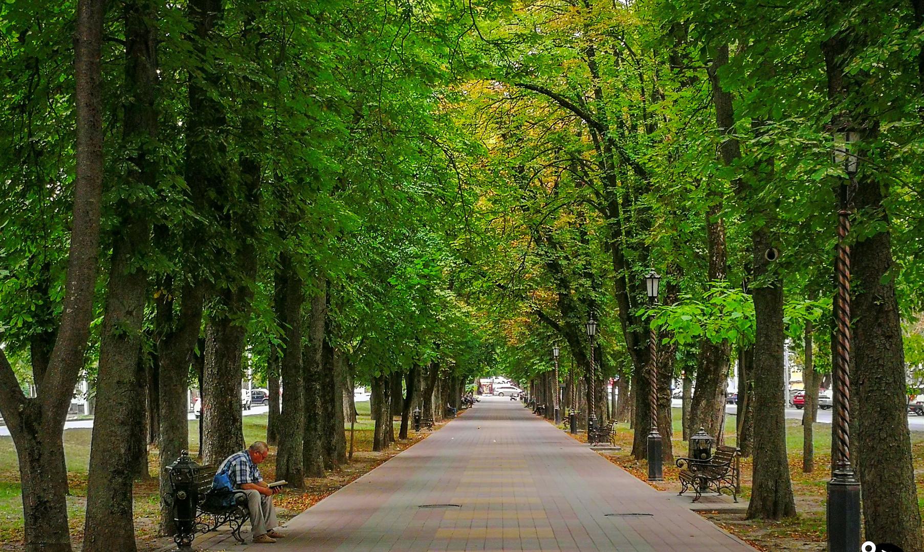 Променад на проспекте Карла Маркса, Ставрополь