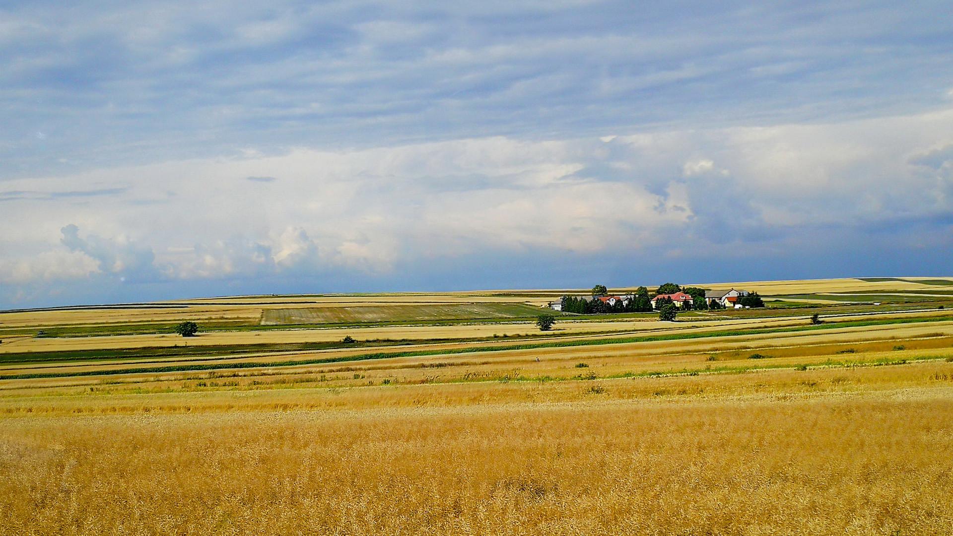 Пейзажи равнинной Польши