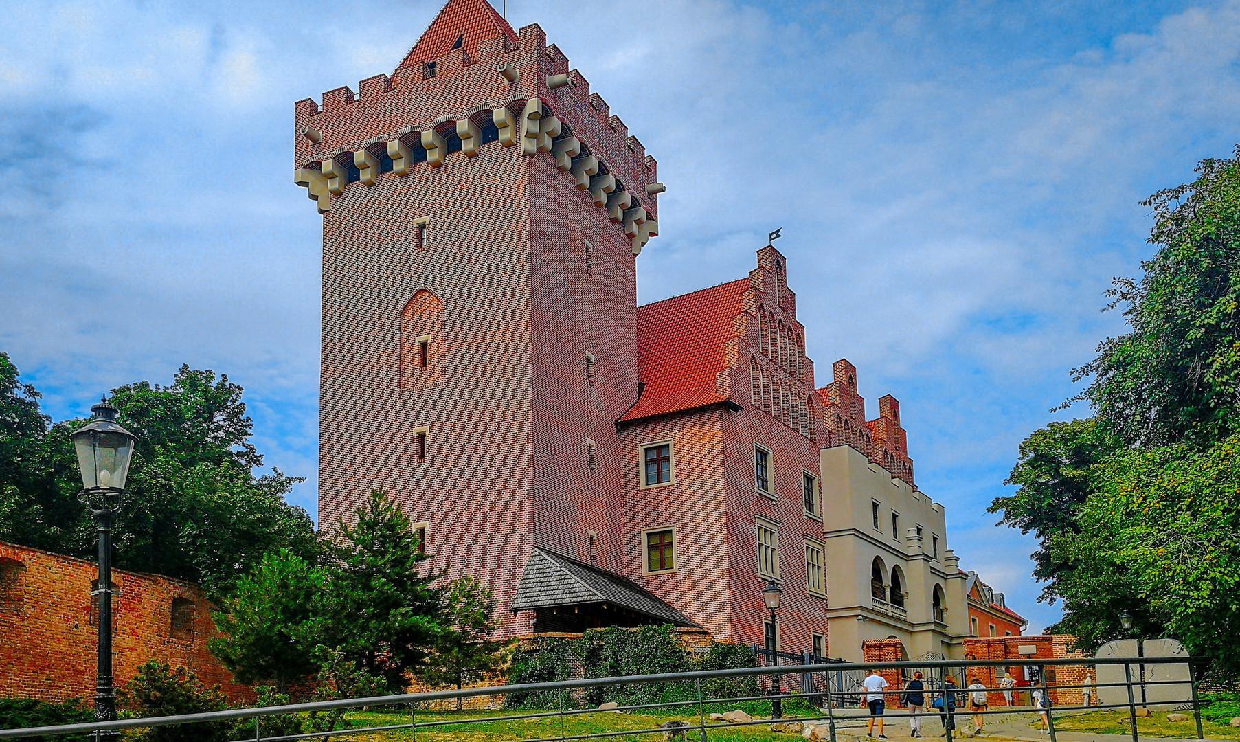 Королевский замок в Познани