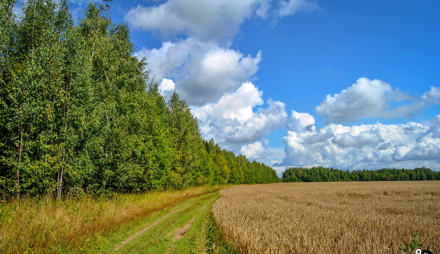 Пейзажи Курской области