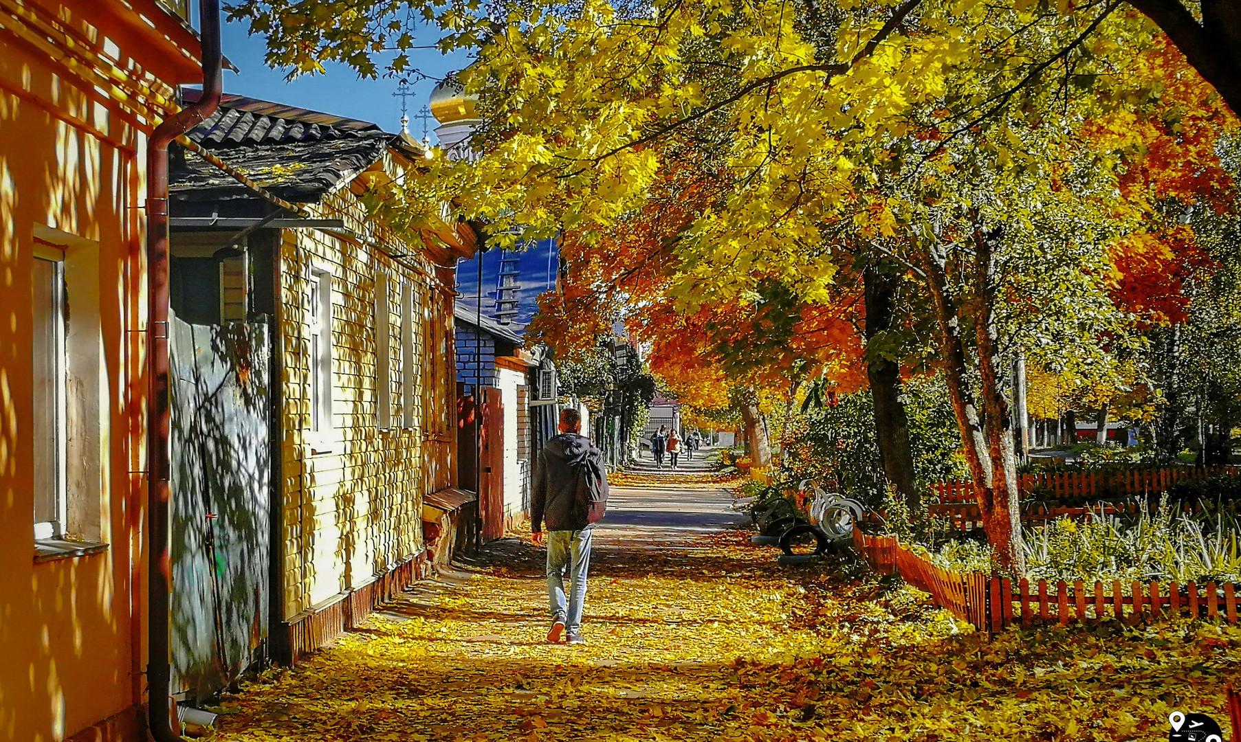 улицы Орла