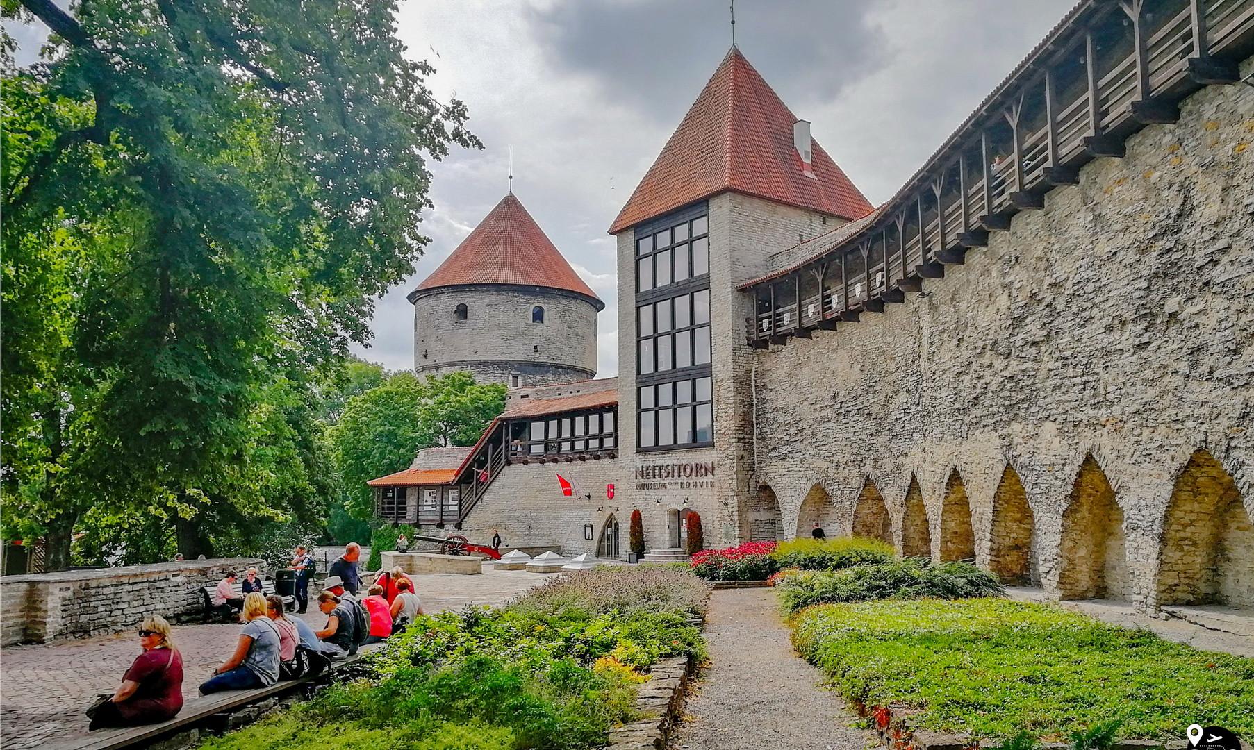 Музей и башня Нигулисте, Таллин