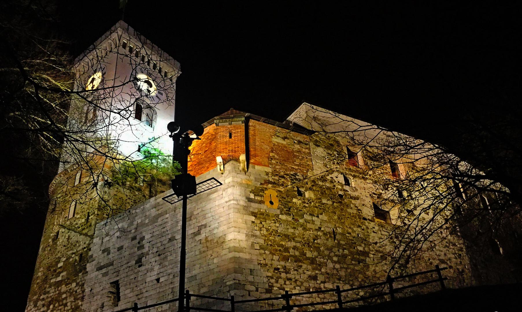 Люблянский замок в Любляне