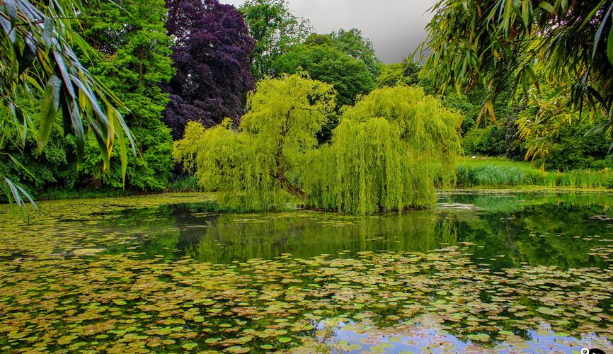 Ботанический сад в Мюнстере