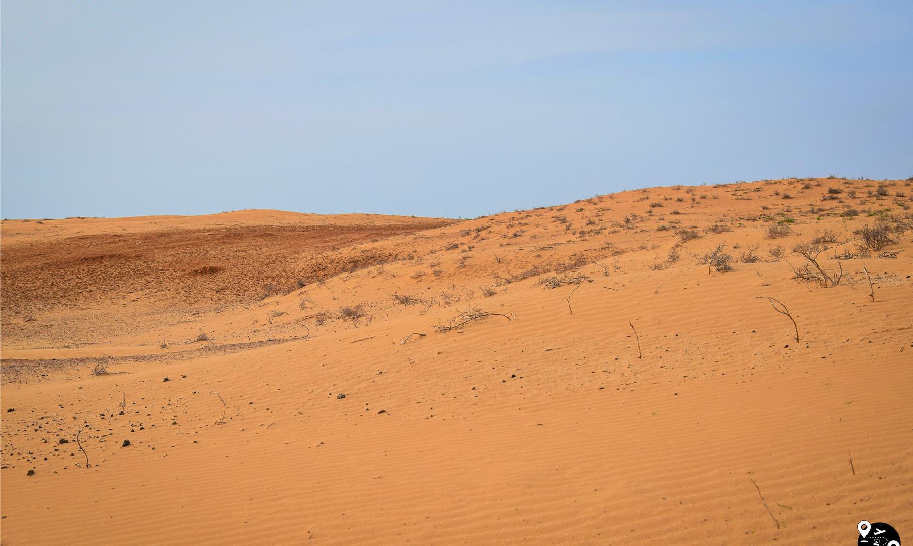 Песчаные дюны в Калмыкии