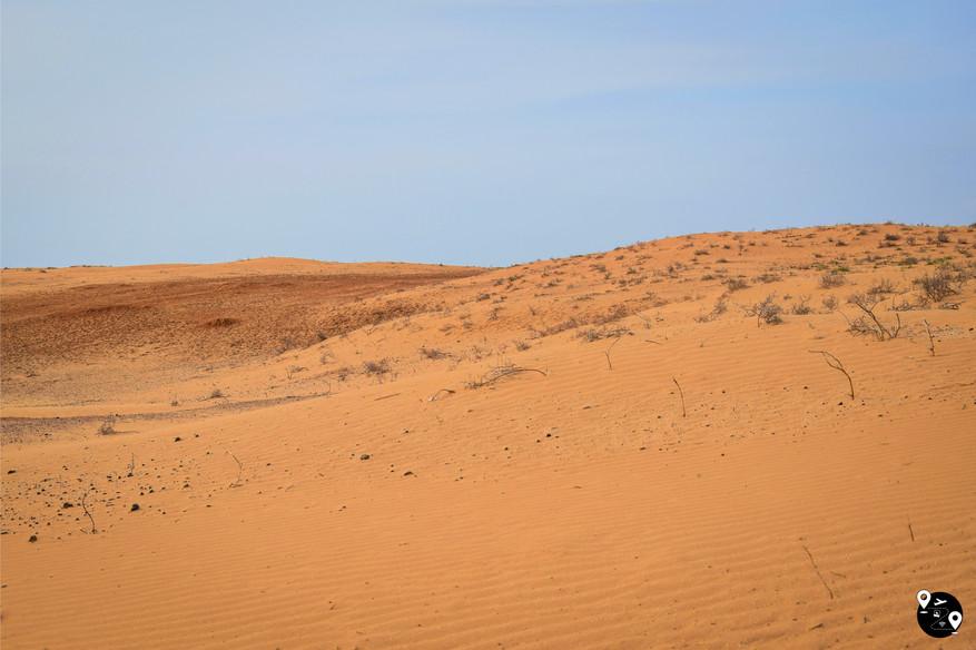 Пустыня Утта, Калмыкия