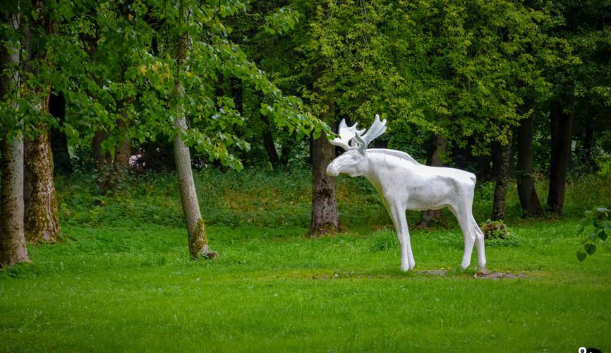 Парк 30 лет Октября, Великий Новгород