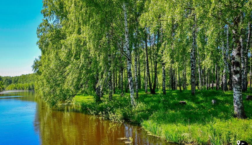 Landscapes of the Kostroma region