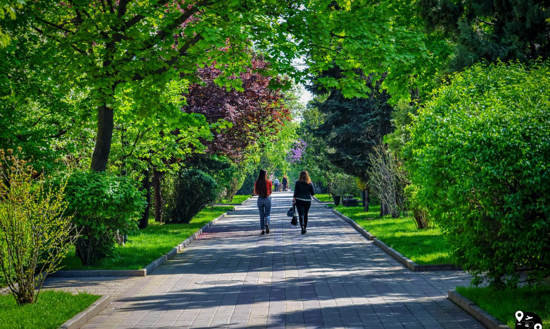 Улица Пушкина, Ростов-на-Дону