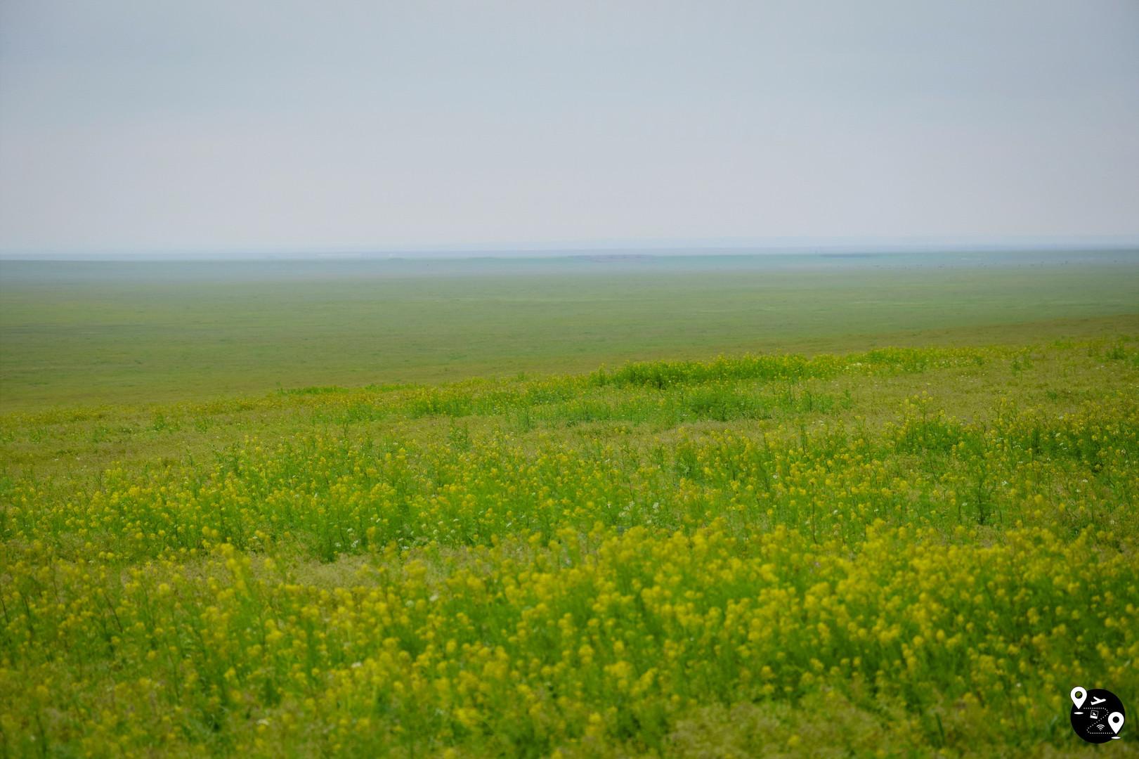 Степные пейзажи Калмыкии
